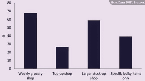 eGrocery Shopper's Behaviour