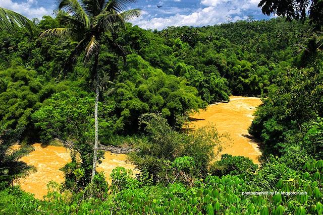 Belokan Sungai Citanduy.