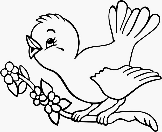 Tweety Bird Coloring Sheet   Bird Coloring Page Elegant Cute  Bird Coloring Pages At Bird