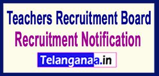 Teachers Recruitment Board TRB Tamil Nadu Recruitment Notification 2017 Last Date 30-05-2017
