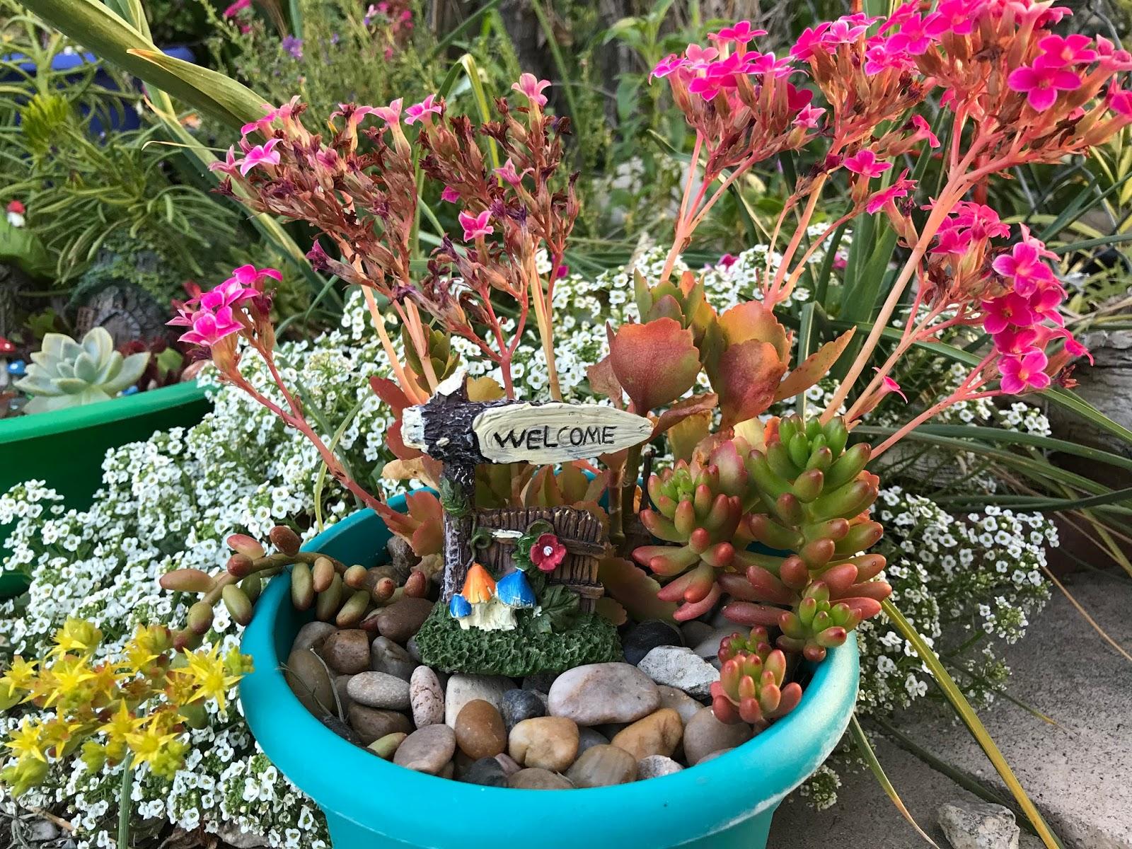 Grandma\'s Enchanted Fairy Garden: Dollar Tree Container Gardens
