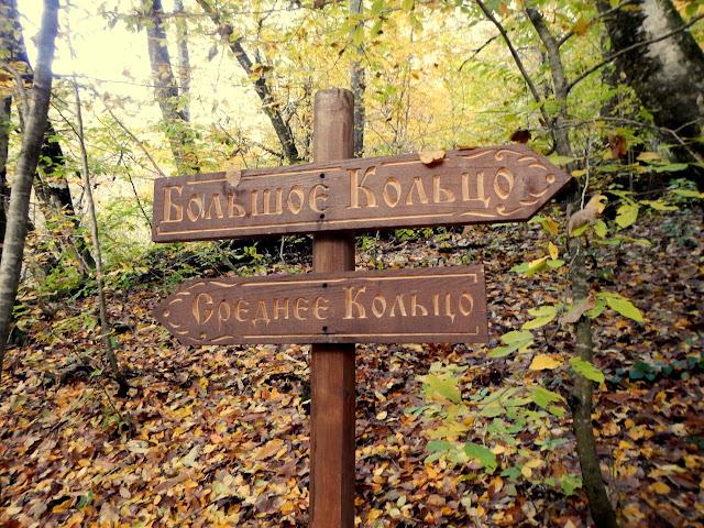 Тропа здоровья на Розе Хутор в Красной поляне Сочи