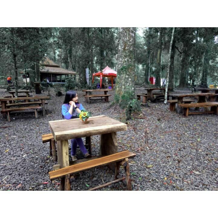 Wisata Mojosemi Park Wisata Kekinian