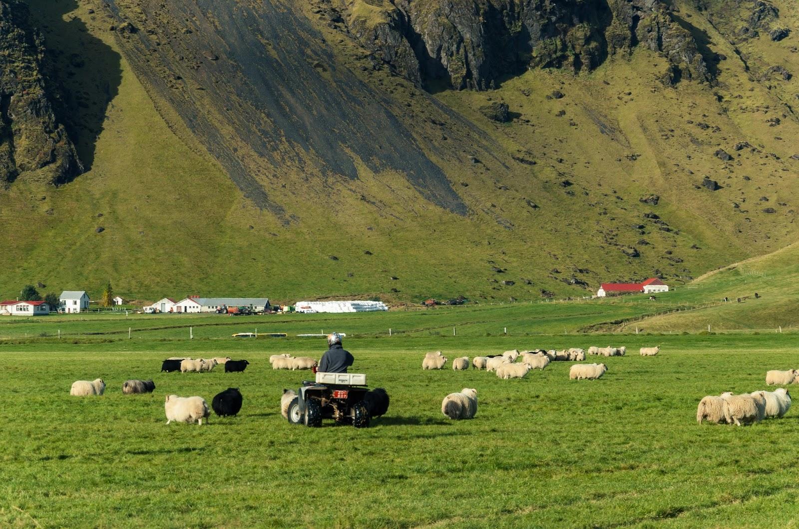 Islandia, Skógar. skansen, tradycja