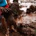 O lamaçal de Brumadinho é só uma consequência de nossa tragédia institucional