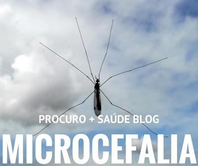 A microcefalia