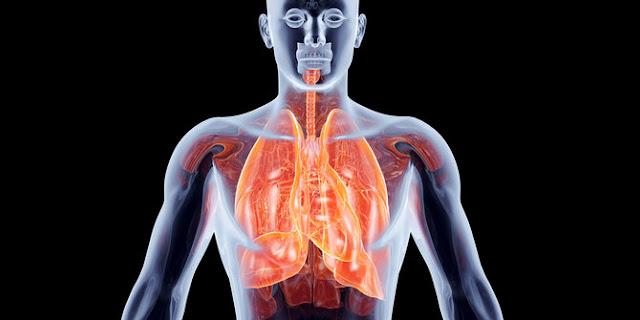Awas, ini 6 benda rumah yang bisa merusak paru-paru!