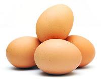 Luar Biasa, Telur Ternak dan Manfaatnya