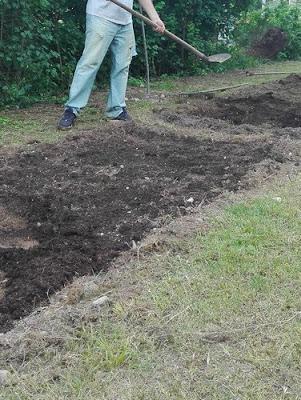 Cose da fare nell'orto biologico: preparare il terreno con il compost
