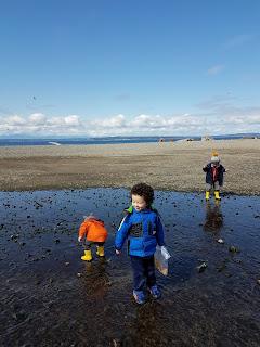 Toddler and Preschooler Activities that start with B Beach