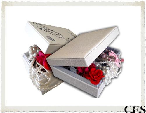 scatola contenente il cellulare VanityEvo