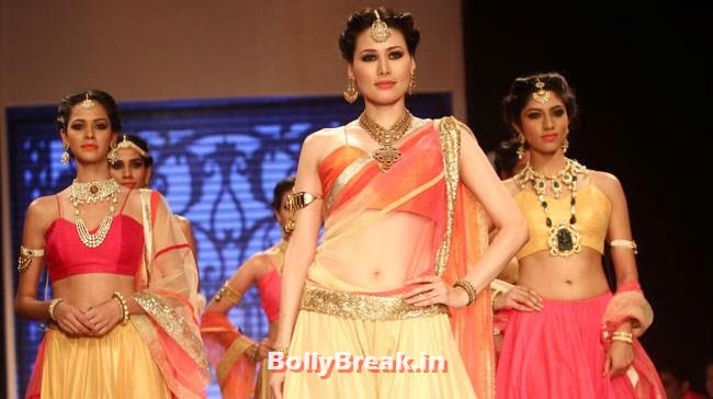 , Dia Mirza in Orange Saree at IIJW 2014
