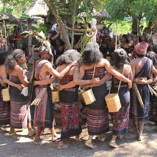 Tinuku Travel Takpala Village watch exotic Abui tribe in Alor Island, Lapo and Fala Foka houses accompanied Lego-Lego dance