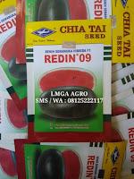 tanaman semangka, menanam semangka, jual benih hibrida, lmga agro