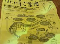 Yomiuri land fireflies
