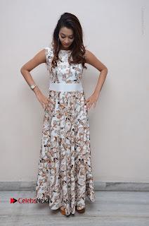 Telugu Actress Reshmi Thakur in Long Dress at Plus One ( 1) Audio Launch  0072.jpg