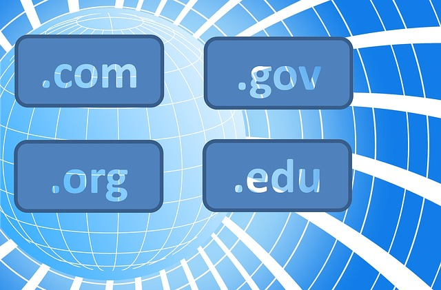 Flipping Domain Names