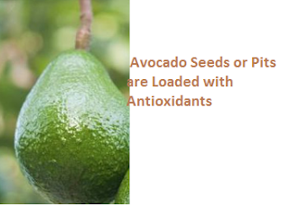 Avocado Seeds or Pits are Loaded with Antioxidants