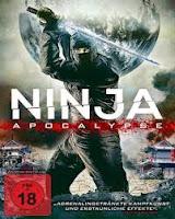 Ninja Apocalypse (2014) online y gratis