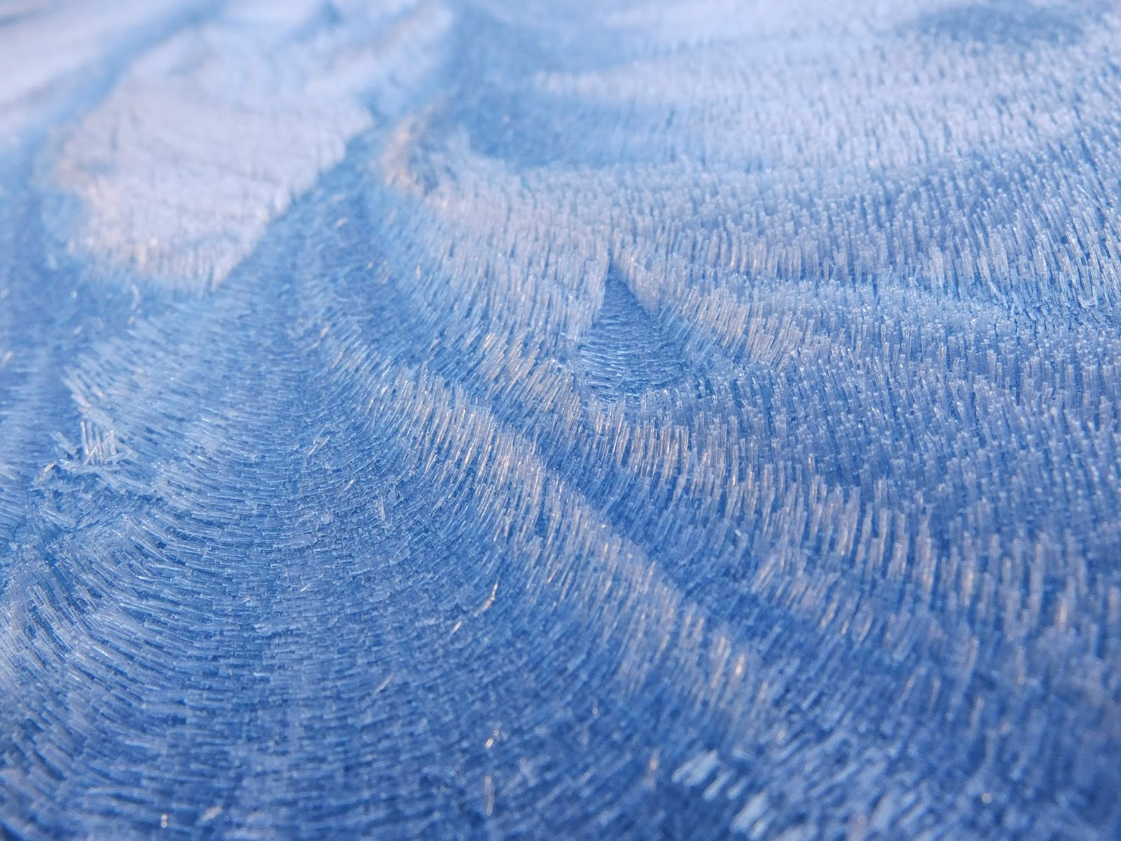 Close up of frost twinkling in the sunlight.