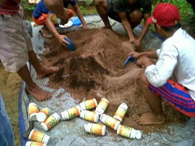 power nutrition, pupuk sawit, pupuk organik sawit, pupuk sawit power nutrition