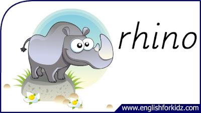 rhino flashcard