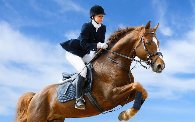 Springruiter met haar paard en een blauwe lucht