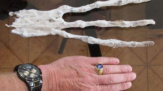 Mano alienígena con tres dedos encontrada en Perú