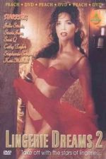 Lingerie Dreams 2 1994