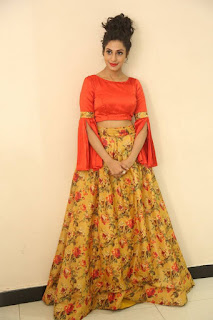 Actress Iraa Stills IN Floral Skirt at Vaadu Veedu O Kalpana Audio Launch  0036.jpg