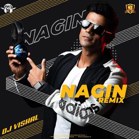 NAGIN DANCE (REMIX) – DJ VISHAL