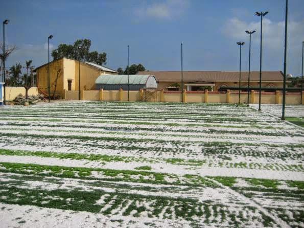 Thi công sân cỏ nhân tạo sân bóng