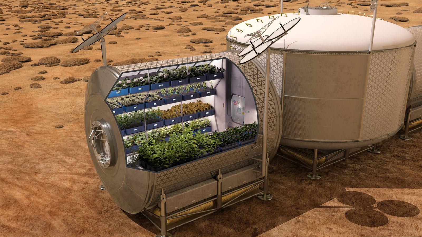 Mars greenhouse by NASA
