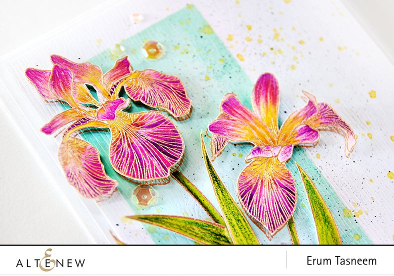 Altenew Enchanted Iris stamp set, card by Erum Tasneem - @pr0digy0