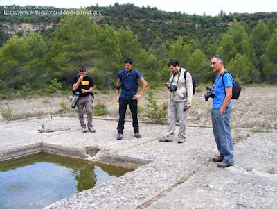 http://www.biodiversidadvirtual.org/insectarium/Algunos-de-los-participantes-en-el-Testing-del-Punto-BV-Espacio-Pirineos-img584710.html