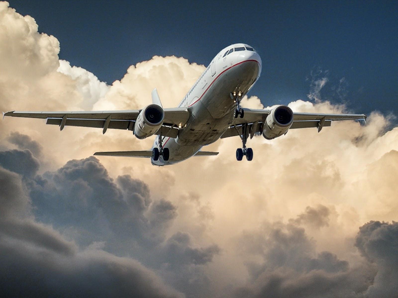 aviación economia