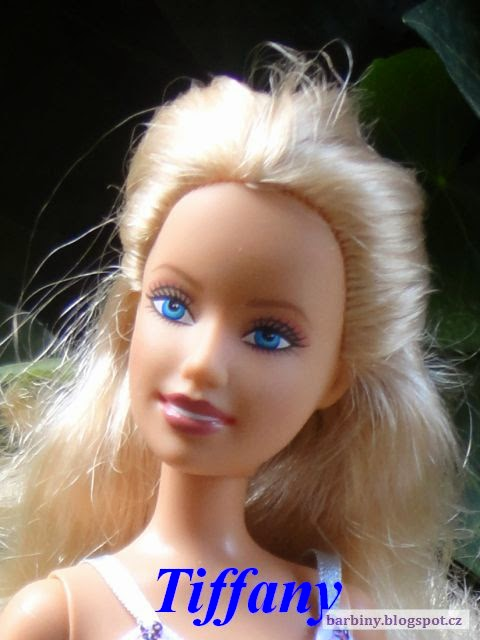 http://barbiny.blogspot.cz/2014/07/fashion-fever-barbie-2007.html