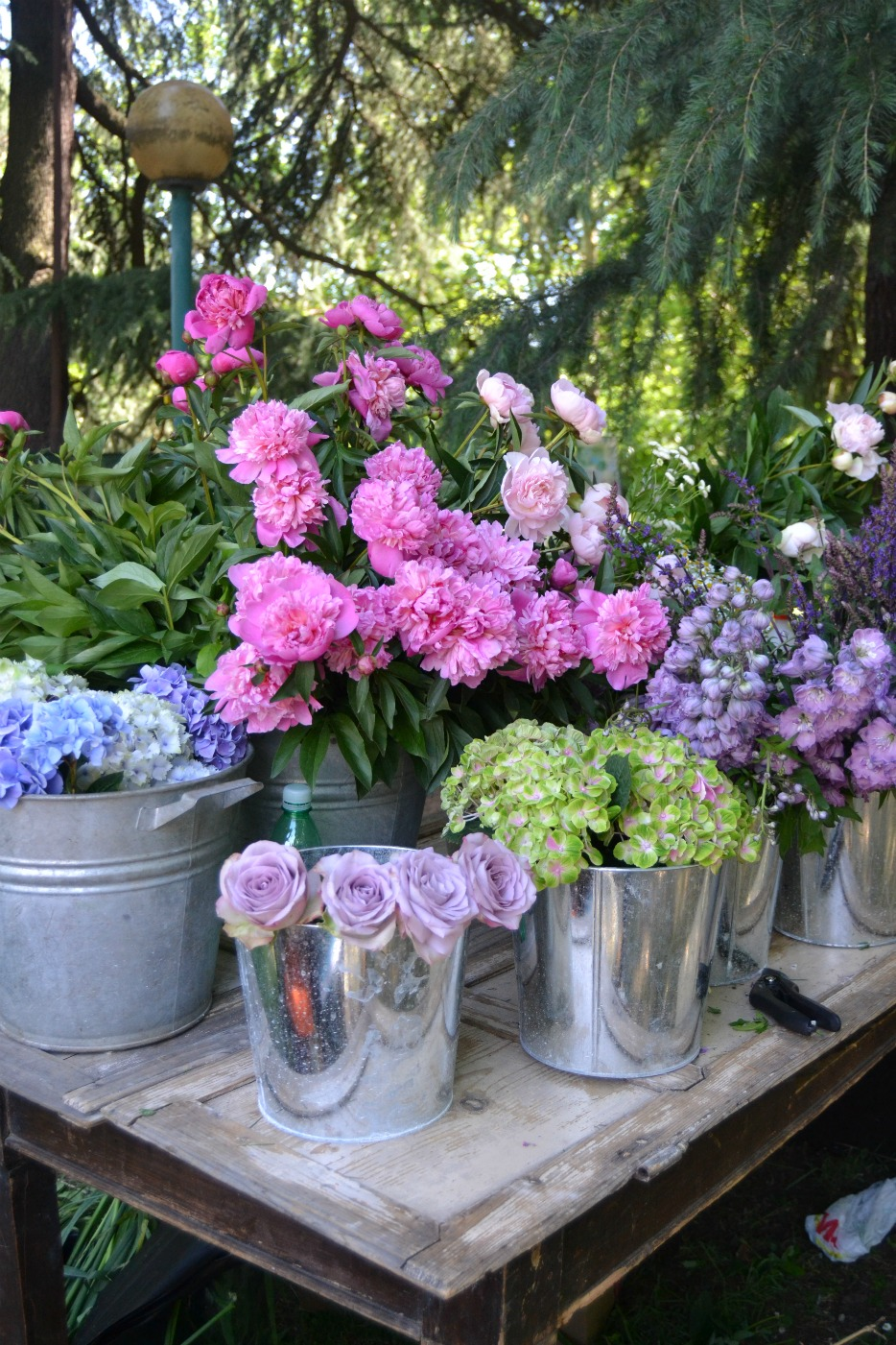 Cream life terrazze e giardini i fiori for Terrazze e giardini