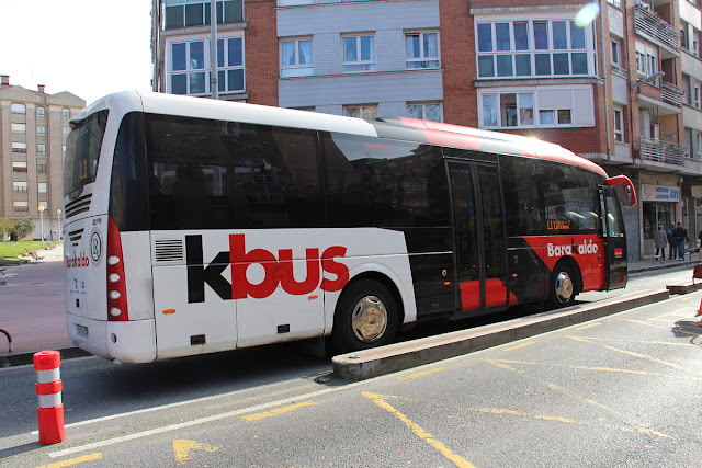 PP pide que se puedan llevar perros en el Kbus