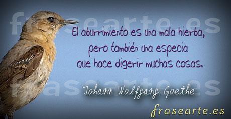 Frases para la vida Johann Wolfgang Goethe