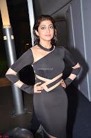 Pranitha Subhash in a skin tight backless brown gown at 64th Jio Filmfare Awards South ~  Exclusive 108.JPG