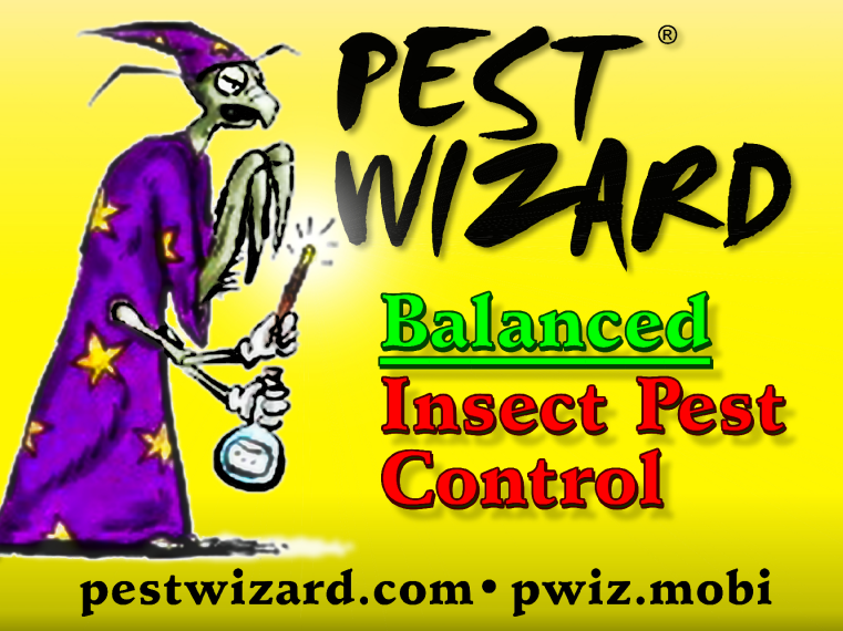 Vinyl Banner Printed for Pest Wizard | Banners.com