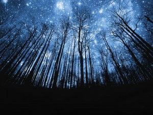 Parlaklığına Göre Yıldızlar