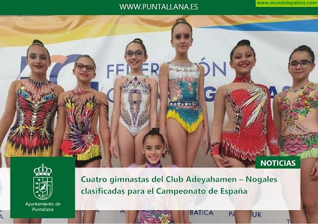 Cuatro gimnastas del club Adeyahamen – Nogales clasificadas para el Campeonato de España