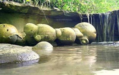 batu,trovant,tumbuh,berkembang