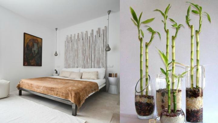Marzua c mo decorar con bamb - Bambu seco para decoracion ...