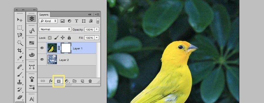 Cara Membuat Layer Mask Pada Photoshop Tutorialswb Belajar Bahasa Pemrograman Php
