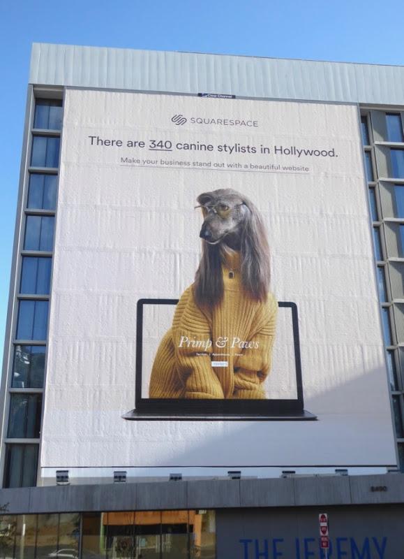 SquareSpace canine stylists giant billboard