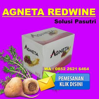 agneta redwine [k3]