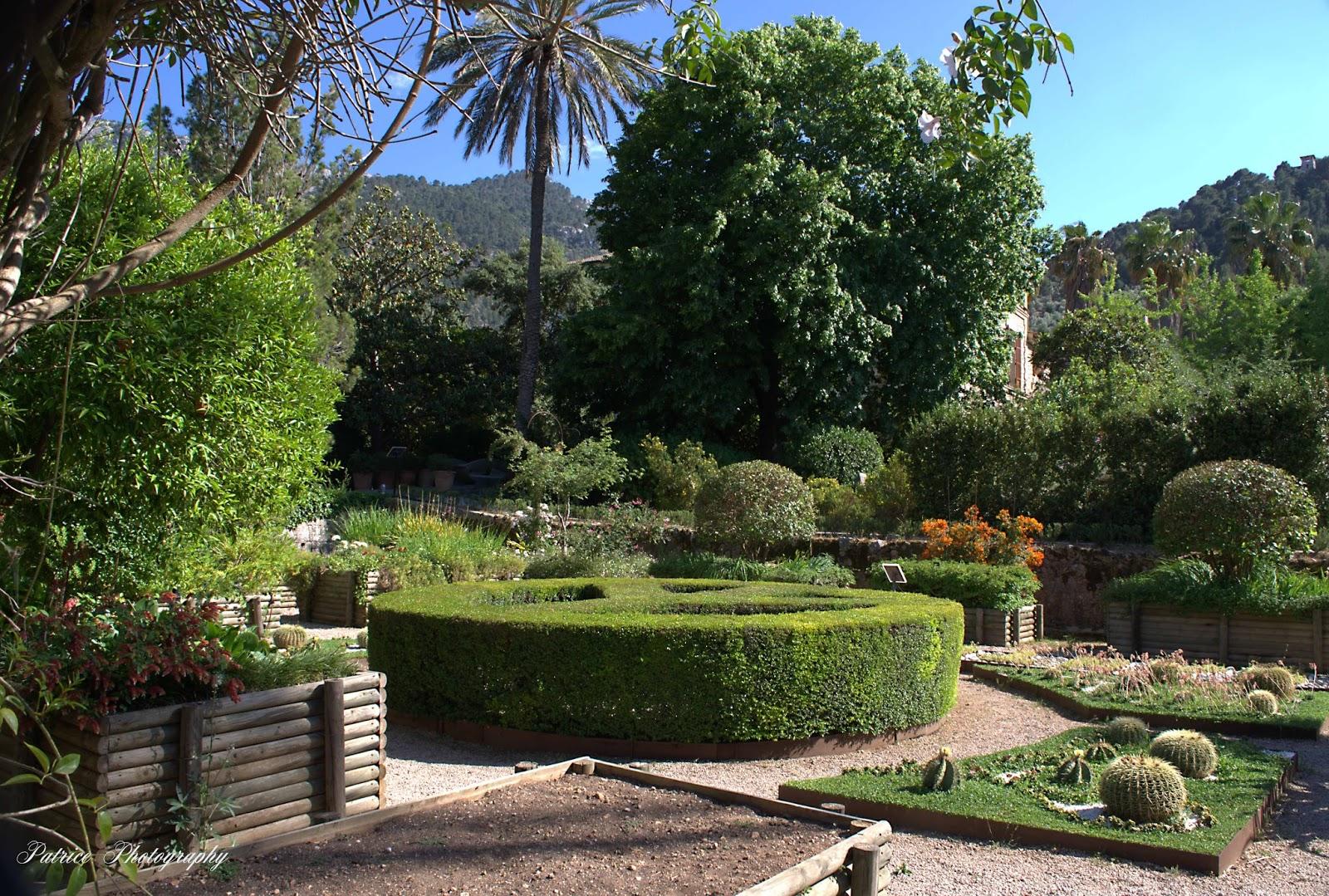 Mallorca jard n bot nico de s ller for Jardin botanico soller